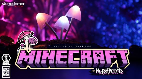 Minecraft on Mushrooms - Coming to Oakland, CA